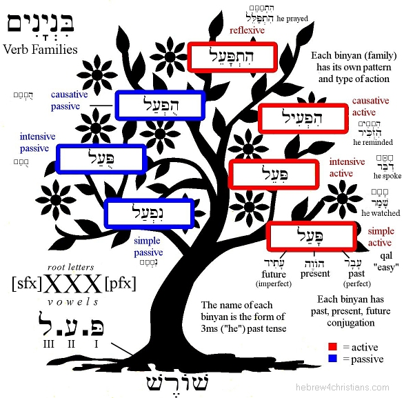 Introduction to Hebrew Verbs
